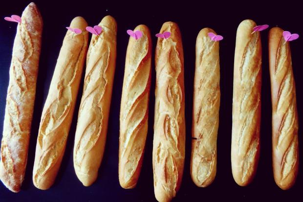 Cata de pan Benidorm, todos los panes.